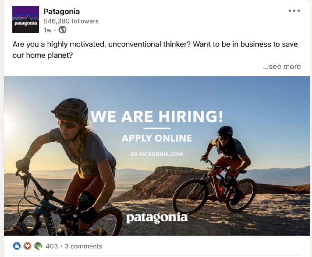 Patagonia Linkedin